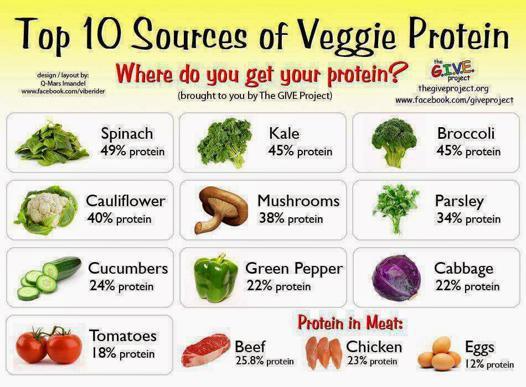aliments contenant des protéines végétales