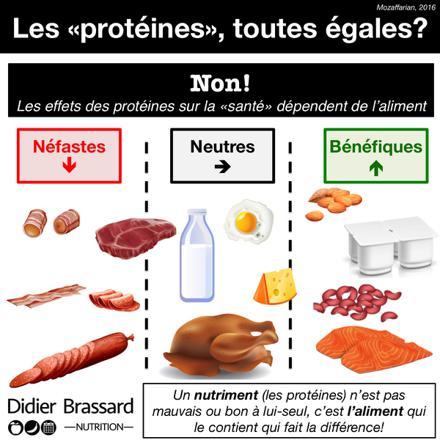 aliments riches en protéines