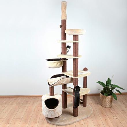 arbre a chat plafond
