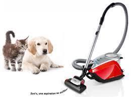 meilleur aspirateur pour poils d'animaux