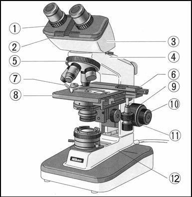 ou  un microscope