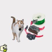 cloture electrique pour chat sans collier