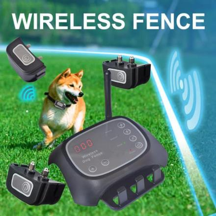 cloture sans fil pour chien