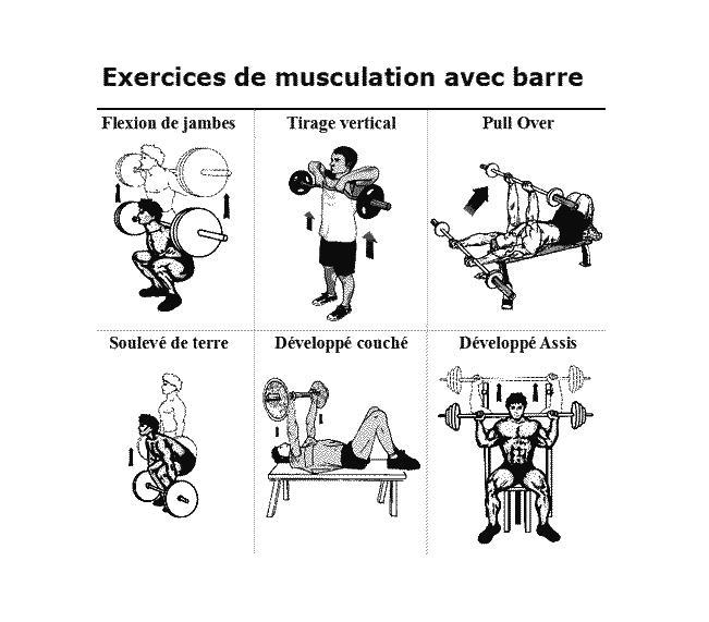 exercice muscu barre