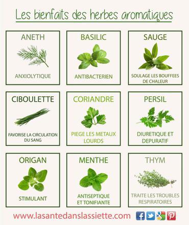 les bienfaits des plantes