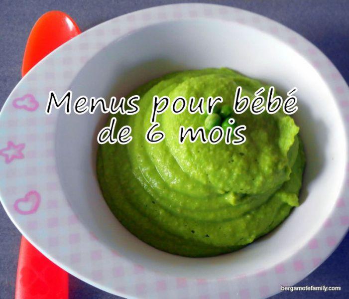 recette pour bébé de 6 mois